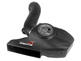 Momentum GT Pro Dry S Air Intake System 50-70036D