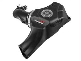 Momentum GT Pro Dry S Air Intake System 50-70050D