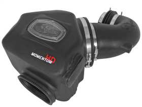 Momentum HD Pro DRY S Air Intake System