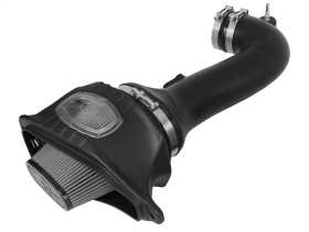 Momentum Pro DRY S Air Intake System 51-74202-1