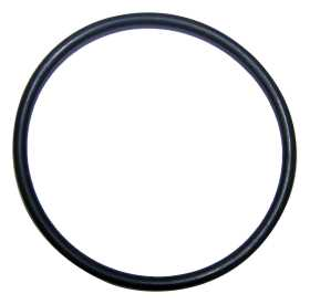 Distributor O-Ring
