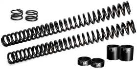 Street Performance Fork Springs Set