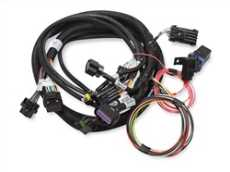 Electronic Throttle Harness
