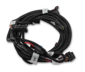 Holley EFI Ford Coyote TI-VCT Sub Wiring Harness