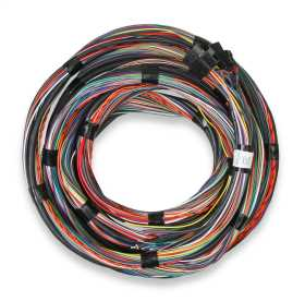 Unterminated Main Engine Wire Harness