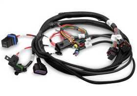 Terminator® EFI Wiring Harness