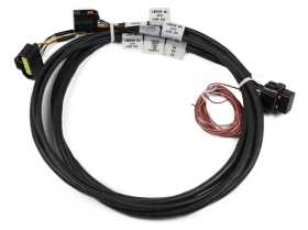 HEMI Drive By Wire Harness