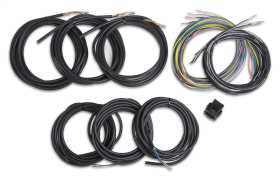 Unterminated Vehicle Harness For Digital Dash