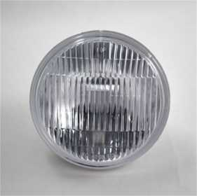 Fog Light Lens/Reflector 4208