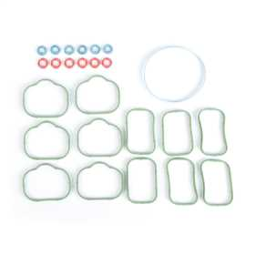 Fuel/Intake Manifold Seal Set