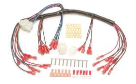 Gauge Wiring Harness