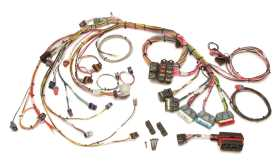 Fuel Injection Wiring Harness 60212