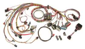 Fuel Injection Wiring Harness 60214