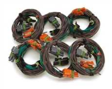 Emission Wire Harness