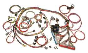 Fuel Injection Wiring Harness 60520