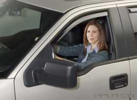 Element Tinted Window Visor In Channel 580018